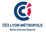 Logo CCI