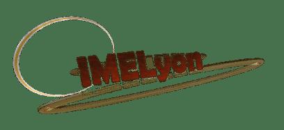 Logo IME Lyon